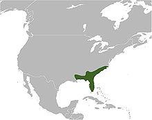 C. adamanteus map.jpg