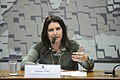 CDR - Comissão de Desenvolvimento Regional e Turismo (29797002223).jpg