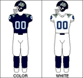 CFL Jersey TOR1996.png