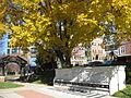CMH fall front garden 02.JPG