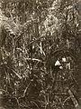 COLLECTIE TROPENMUSEUM De bij de Singkep Tin Maatschappij werkzame Sybrand van der Woude op een weg van boomstammen door het moeras TMnr 60052017.jpg