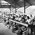 COLLECTIE TROPENMUSEUM Het sorteren van koffie Sumatra's Westkust TMnr 10012150.jpg