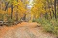 Camino al Parque Nacional.jpg