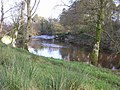Camowen River, Omagh - geograph.org.uk - 319847.jpg