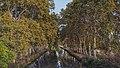 Canal du Midi, Villeneuve-lès-Béziers.jpg