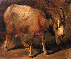 Bionda dell'Adamello - Painting from c. 1760 by Francesco Londonio (1723–1786), showing a goat of Bionda dell'Adamello type, with typical coat and facial markings (Accademia Carrara, Bergamo)