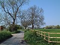 Carr Lane, East Lound - geograph.org.uk - 170931.jpg