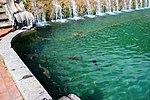 Cascadas jardín Caserta 28.jpg