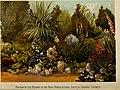 Cassell's popular gardening (1884) (20546856241).jpg