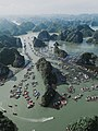 Cat Ba island fishing village.jpg