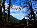 Cestou na hrad - panoramio.jpg