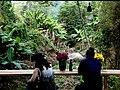Chae Son, Mueang Pan District, Lampang, Thailand - panoramio (4).jpg