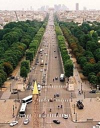 Avenue (landscape)