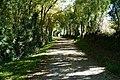 Chemin des Balises (Éduarel, 4 octobre 2017).jpg
