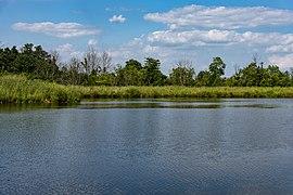 Chestnut Ridge - Fishing Pond 4.jpg