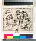 Cheval et mule à la mer (NYPL b12390850-490660).jpg