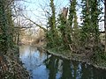 Christchurch - River Avon - geograph.org.uk - 1762377.jpg