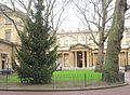 Christmas tree London 2012 14.jpg