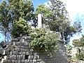 Cim del Bestracà (maig 2011) - panoramio.jpg