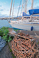 Circolo Nautico NIC Porto di Catania - Sicilia Italy Italia - Creative Commons by gnuckx (5436631743).jpg