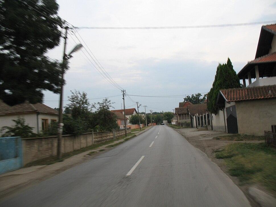 Cirikovac1