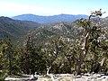 Clark Canyon 1.jpg