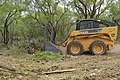 Clearing brush is a high ranking practice for land management at Stasney's Cook Ranch in Albany, Texas such as eliminating prickly pear and mesquite trees. (24815318350).jpg