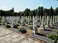 Cmentarz klaszt N-ow fc05.jpg