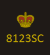 CoLP New Rank Insignia - Special Superintendent.png