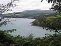 Coastline, Newport Bay - geograph.org.uk - 1513936.jpg