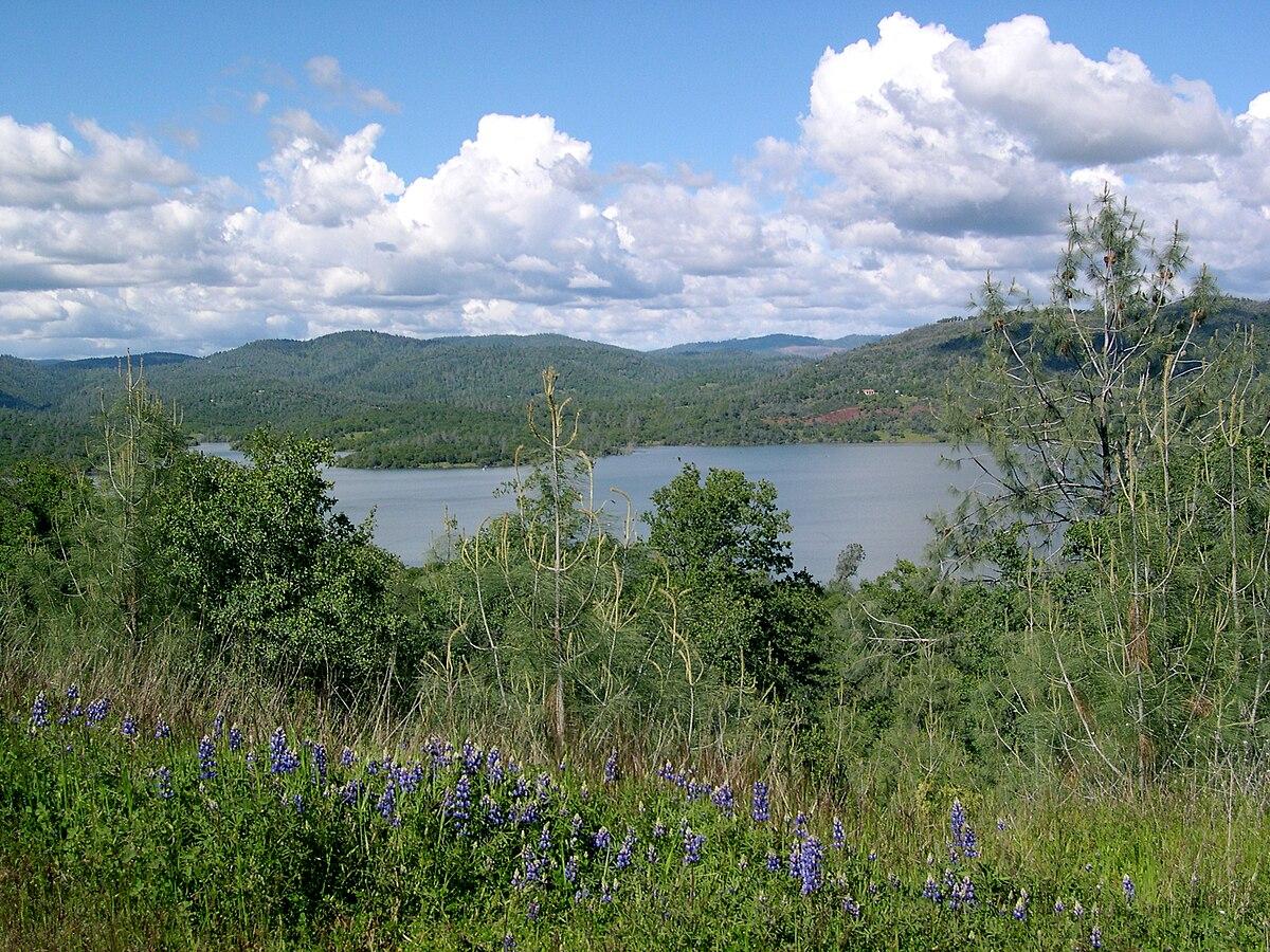 Px Collins Lake