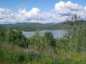 Collins Lake, Spring 2004