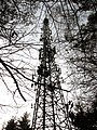 Communication tower in the woods - geograph.org.uk - 1085339.jpg