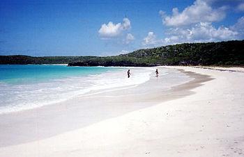 Corcho Beach%2C Vieques%2C Puerto Rico