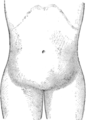 Corset1908 131Fig64.png