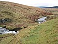 Cottonshope Burn - geograph.org.uk - 655746.jpg