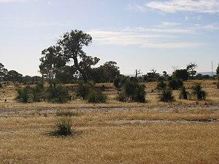 Cullacabardee, Western Australia Suburb of Perth, Western Australia