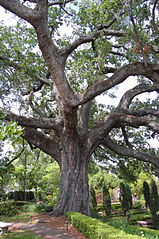 paul fairbanks oak creek wi dating sites