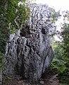 Czarna Skała DK18.jpg