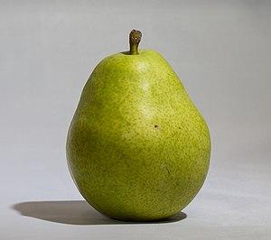 D'Anjou - D'Anjou pear