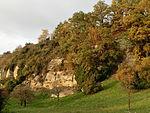 D-BW-Überlingen - Steilwand bei Goldbach.JPG