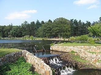 D.W. Field Park - Upper Porter Pond