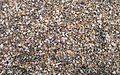 D. Sikes 2012-08-09-TG1-StGeorge-Isl-8091017a (7993129918).jpg