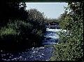 Dan river 2004.jpg