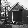 De met bloed bevlekte kleding voor het lijkhuisje van de begraafplaats van Anloo, Bestanddeelnr 900-3006.jpg