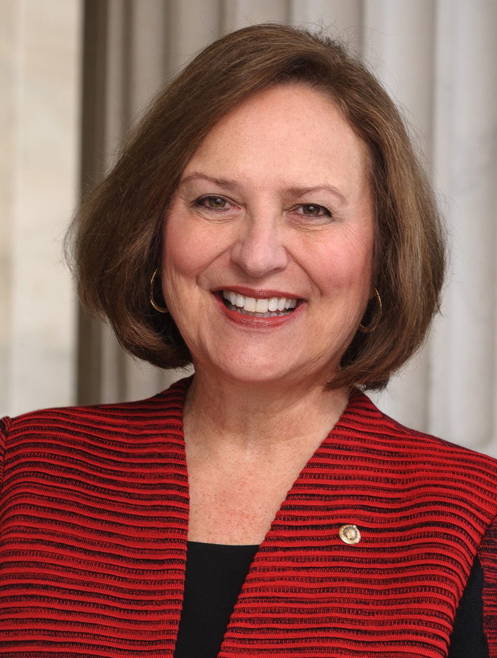 Deb Fischer, official portrait, 115th Congress (cropped)
