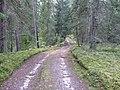 Degučių sen., Lithuania - panoramio (213).jpg