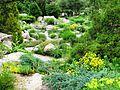 Denver Rock and Alpine Garden - Flickr - brewbooks.jpg