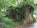 Derelict Farm Building, Caercady - geograph.org.uk - 481665.jpg