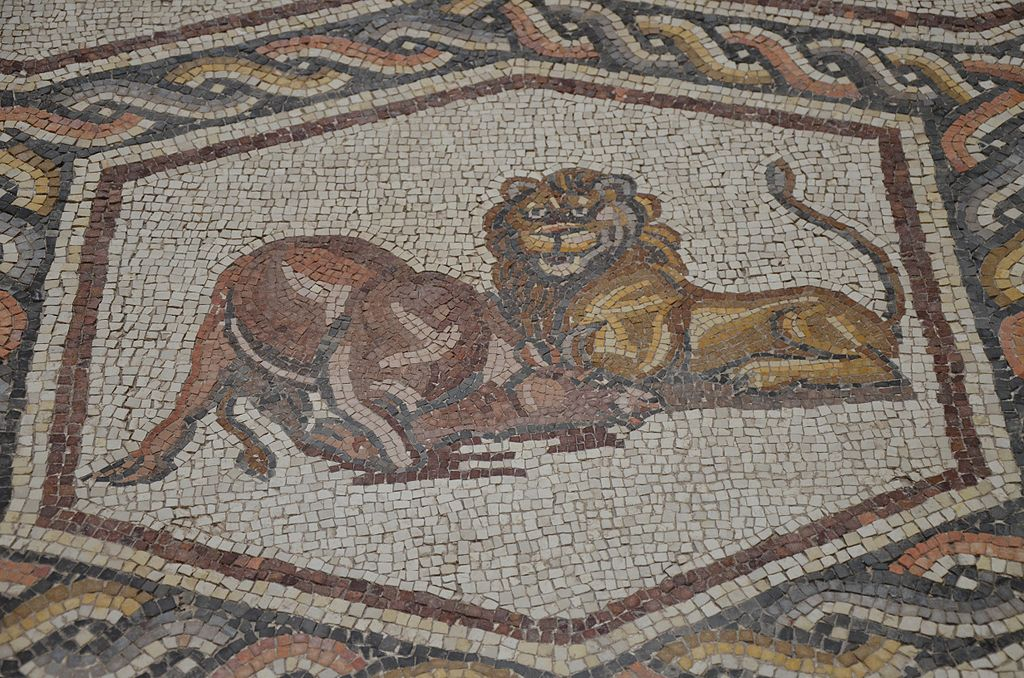 File Detail Of The Lod Mosaic A Lion Heating A Water